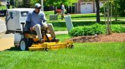 Tired of mowing your lawn? This phone app may help